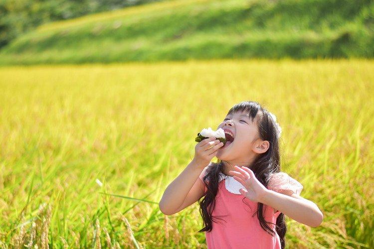 環境に適した米づくりを行っており、食の安全性を守っております