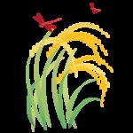 稲穂とトンボ